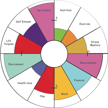 circle wheel of life